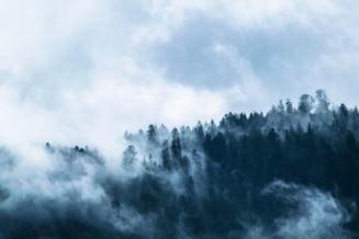 Cod galben de ceață în patru județe. Zonele cu vizibilitate redusă