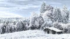 Cod galben de ninsori abundente in nordul tarii