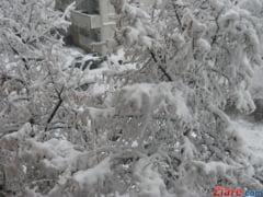 Cod galben de ninsori si viscol in mai multe judete