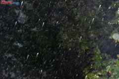 Cod galben de ploi abundente si vant in jumatate de tara