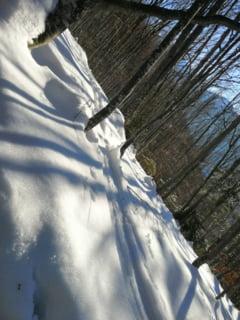 Cod galben de vant si ninsori in 26 de judete