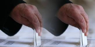 Comasarea alegerilor: PDL respinge ideea, UDMR ar gasi o formula potrivita, PNL e de acord