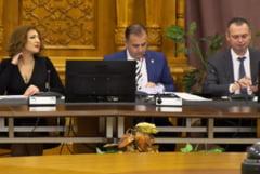 Comisia Juridica a respins initiativa USR privind desfiintarea SS: Deputatii ALDE, UDMR si Pro Romania au lipsit