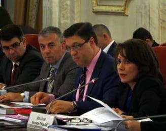 Comisia Juridica din Senat amana dezbaterea Legii gratierii. Serban Nicolae: Oamenii sunt fie foarte prosti, fie foarte ticalosi