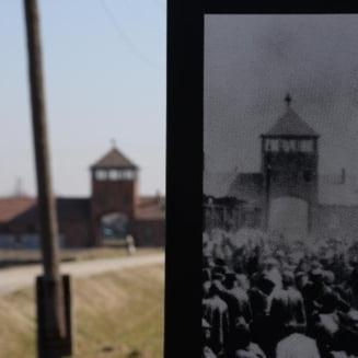 Comoara din cana - ce s-a gasit dupa 70 de ani intr-un obiect de la Muzeul Auschwitz