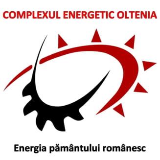 Complexul Energetic Oltenia a avut anul trecut pierderi de 1,1 miliarde lei