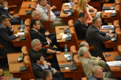 Componenta comisiei de ancheta a referendumului, aprobata - PDL nu are membri