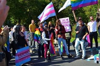 Comunitatea LGBT sarbatoreste un an de la victoria de la referendumul pentru familie