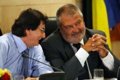 Condamnat sa lucreze in folosul comunitatii la spatii verzi, fostul primar al Timisoarei scapa de aceasta obligatie