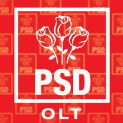 "Conducerea PSD Caracal a fost dizolvata: I s-a imputat lipsa de ""decenta si dialog"""