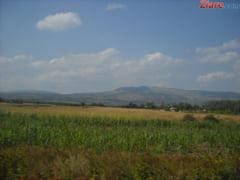 Consilier al premierului: Agricultura romaneasca e amenintata de un mare risc