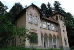 Consiliul Judetean a castigat procesul privind castelul Goga de la Ciucea
