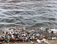Consiliul Local al Sectorului 6 se face stapan pe Lacul Morii