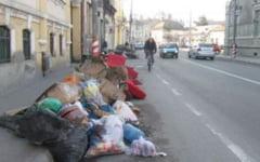 Continua curatenia de primavara pe strazile Targu-Muresului