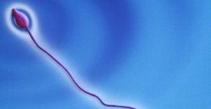 Contraceptiv pentru barbati: Ii face infertili o vreme