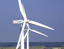 Contractele de racordare a unor parcuri eoliene, controlate de stat (surse)