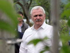 Contre in CSM in cazul repartizarii dosarelor la Curtea de Apel Bucuresti, dupa ce presa a dezvaluit nereguli intr-unul dintre procesele lui Dragnea