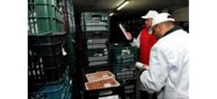 Controale de amploare ale inspectorilor sanitari veterinari in restaurantele, pietele si targurile buzoiene