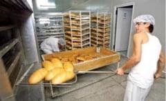 Controale si amenzi aplicate in domeniul fabricarii produselor fainoase