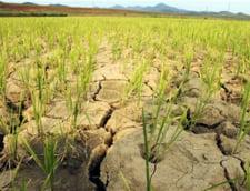 Coreea de Nord cere ajutor pentru combaterea celei mai grave secete din 100 de ani