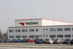 """Cosmarul angajatilor YAZAKI continua! Exploatati si cu salariile taiate fara explicatie, muncitorii care au """"tupeu"""" sa reclame conditiile de munca sunt trimisi acasa fara plata!"""
