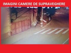 Cosuri de gunoi si masini vandalizate de un adolescent violent - VIDEO