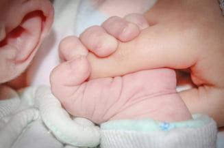 Creste in continuare numarul bebelusilor adusi de la maternitatea Giulesti la spitalul Grigore Alexandrescu