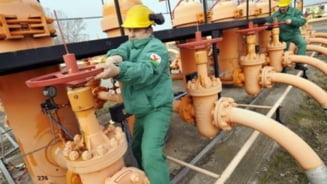Cresterea pretului gazelor incarca factura importurilor