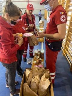 Crucea Rosie a distribuit ajutoare de prima necesitate persoanelor afectate de inundatii in doua comune din Alba