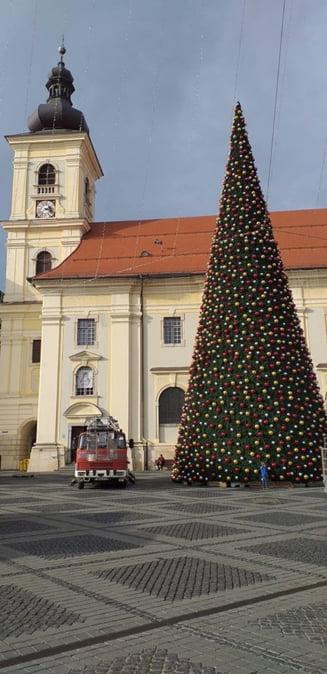 Cu 50 de zile inainte de Craciun, Primaria Sibiu a amplasat un brad de 600.000 de lei (Foto)