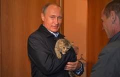 Cu toti ochii atintiti spre imigranti, Putin a castigat razboiul in Ucraina
