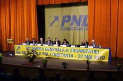 Culetu si Babu, la judecata PNL-ului cu Victor Manea (document)