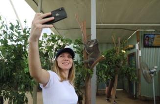Culoar dificil pentru Simona Halep la Australian Open 2019