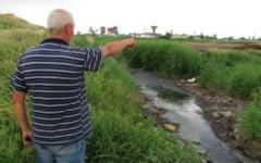 Cum a actionat mafia in Primaria Buzau: Trei hectare de teren vandute la pret de Logan second hand