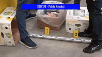 """Cum a ajuns în România jumătate de tonă de cocaină din Columbia: """"S-a greșit transportul"""" VIDEO"""