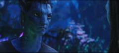 Cum a infuriat James Cameron Noua Zeelanda, dupa ce a reluat filmarile la Avatar 2