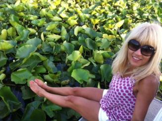 Cum a slabit Elena Udrea 12 kilograme
