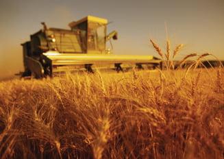 Cum ar arata Romania agricola, daca nu am mai manca alimente de import?