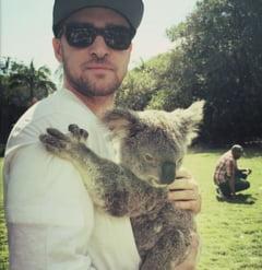 Cum arata copilul lui Justin Timberlake si al Jessicai Biel (Foto)