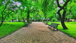 Cum arata unul dintre cele mai frumoase parcuri din Bucuresti dupa reabilitare