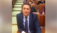 "Cum explica CNCD sanctiunea aplicata lui Serban Nicolae pentru afirmatia cu ""sex anal"""