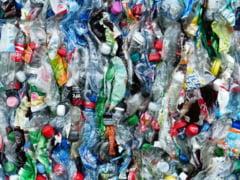 """Cum incurajeaza Ministerul Mediului reciclarea pet-urilor din plastic. """"Poate sa fie un venit interesant pentru copii"""""""