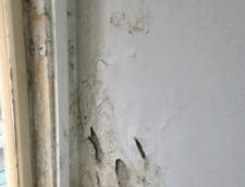 Cum invata studentii din Bucuresti: Igrasie, mucegai, ploua in sala. Ce spune Universitatea (Video)