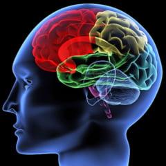 Cum palpita creierul uman la fiecare bataie a inimii: Imagini neobisnuite 3D, dezvaluite de medici VIDEO