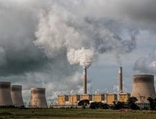 Cum poti face bani si din poluare? Ne arata chiar nemtii