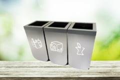Cum sa reciclam si sa colectam separat deseurile