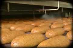Cum se fabrica painea sanatoasa Sylvester Graham - Interviu & Galerie foto