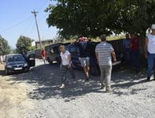 Cum se vede lupta cu pesta africana de la fata locului: 15 oameni s-au dus sa o starpeasca dintr-un sat din Tulcea, ramas deja fara porci