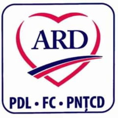 Cum va arata sigla ARD