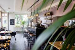 Curatenia si igiena sunt esentiale in restaurante, terase si baruri
